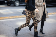 leopardpants