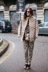 8_leopard-on-leopard